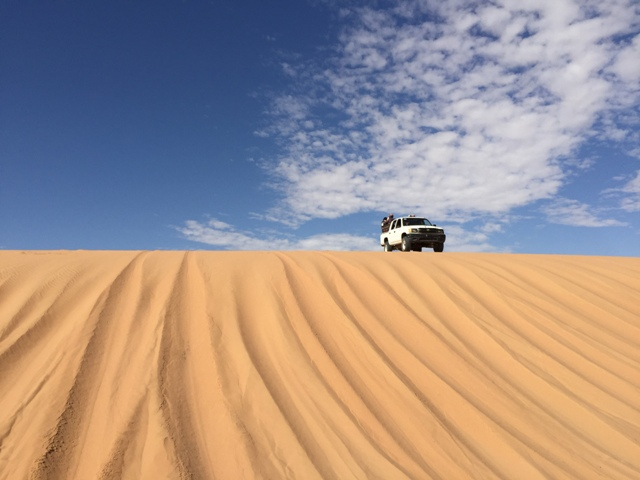 Desert safari drive 65