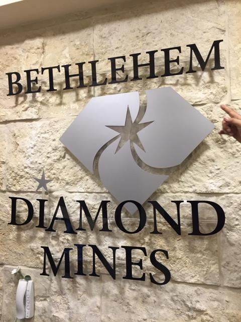 Diamond visit 2