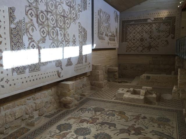 Mt Nebo church mosaics14