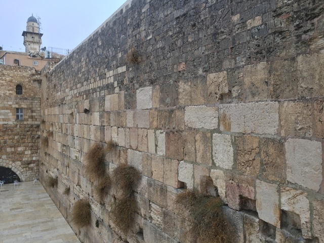 View of Wailing wall7