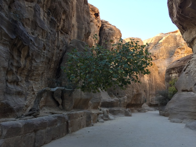 Walking through the Siq 12