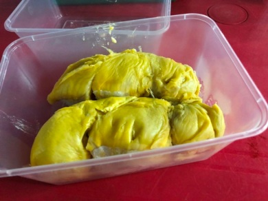 Durian - Yellow ginger species