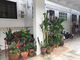 Geylang East Neighborhood