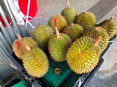 Kimberly street Durians