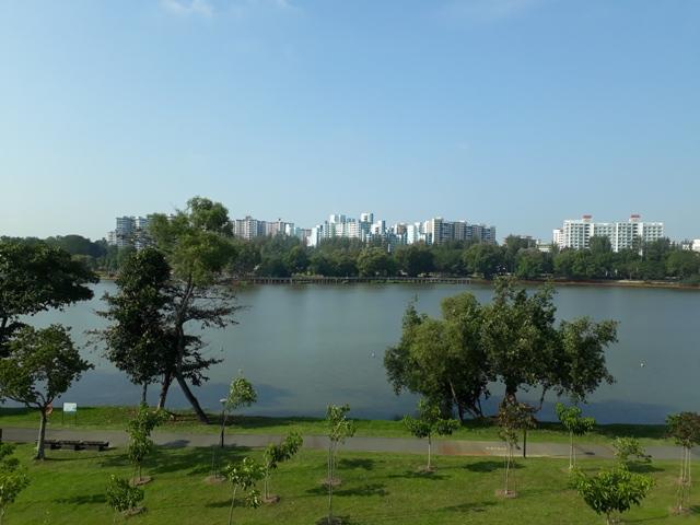 Chinese Garden view2