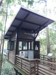 Treetop entrance 2